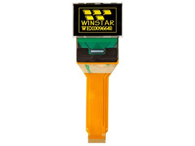 WEX009664B